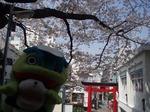 元町厳島神社4