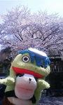 元町厳島神社7